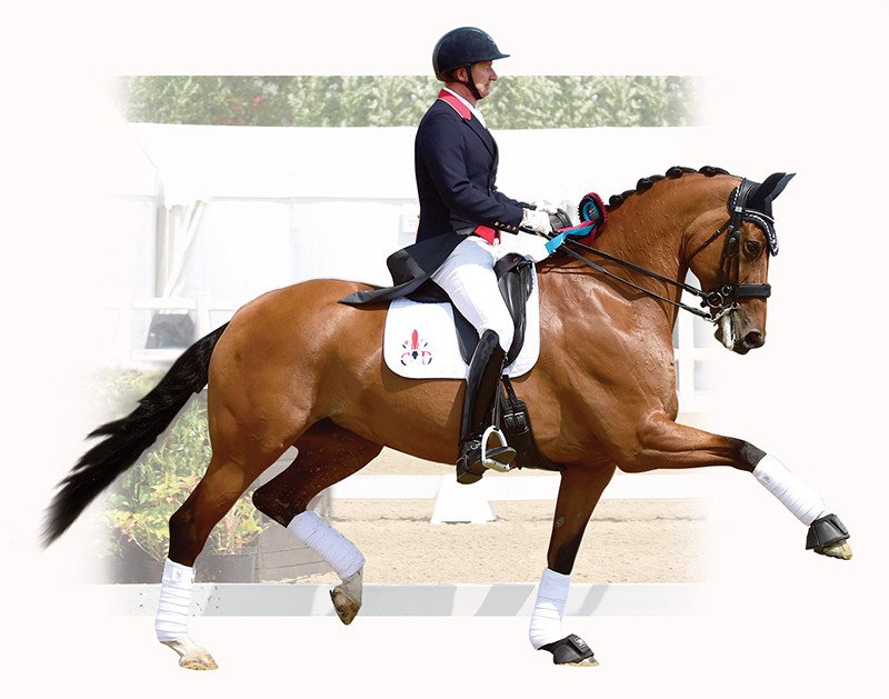 gareth monoflap dressage saddle_f